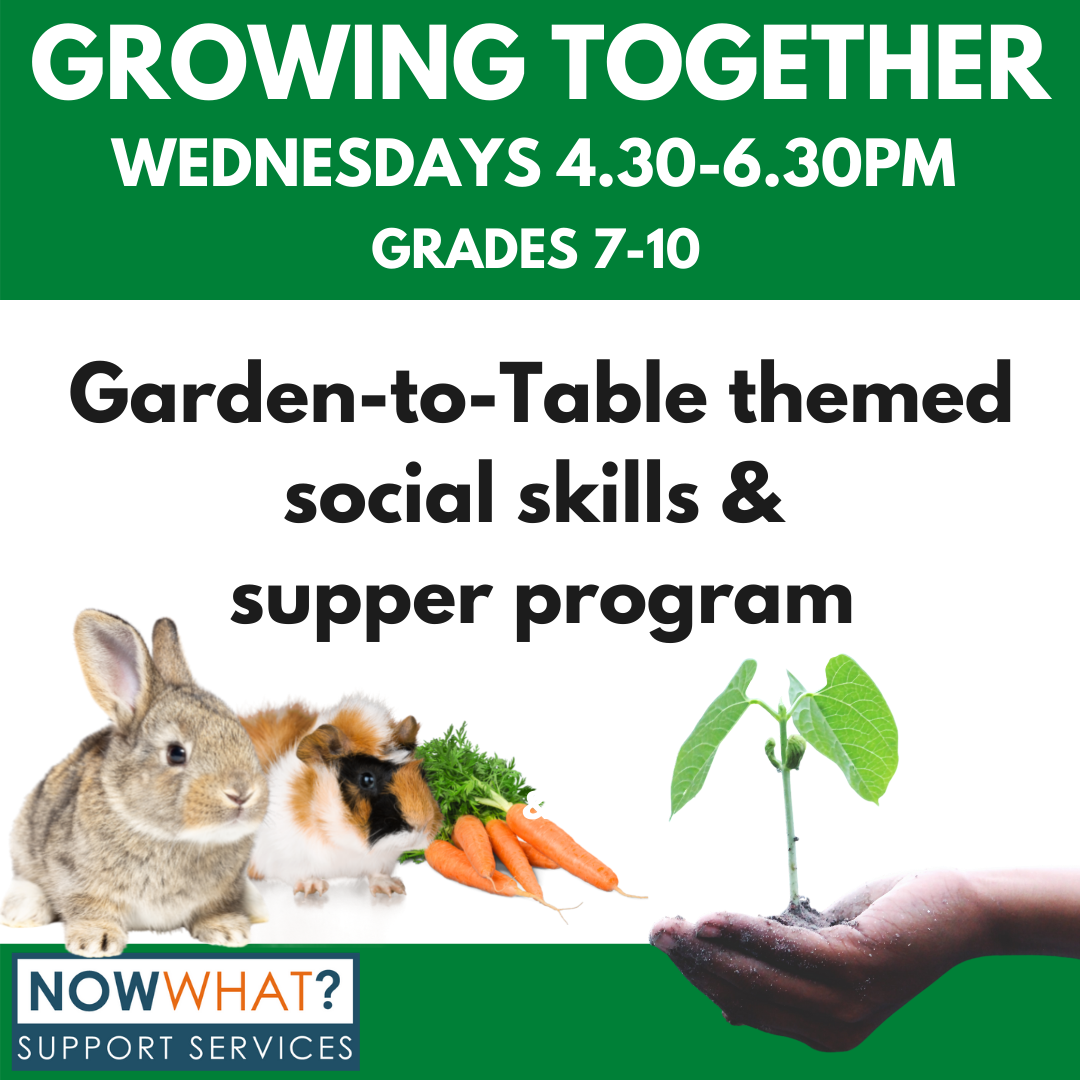Read more about the article Growing Together Garden-to-Table Summer Program