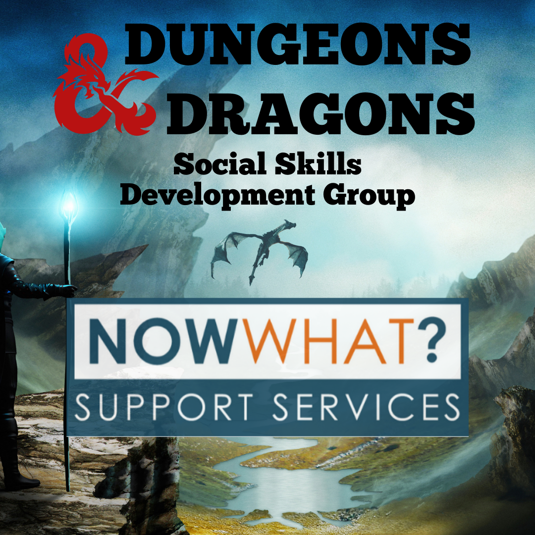 You are currently viewing Dungeons & Dragons – Social Skills through RPGs