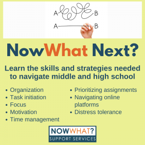 Read more about the article NowWhat Next? Ages 10-17