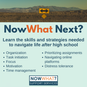 Read more about the article NowWhat Next? Life After High School